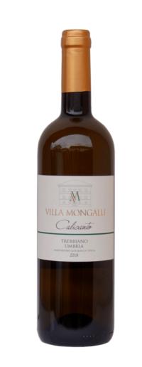 2018 Villa Mongalli Trebbiano Spoletino Calicanto